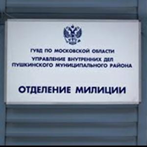 Отделения полиции Мокроусово